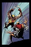 Wolverine by Larry Hama & Marc Silvestri - Volume 1