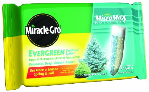 Miracle-Gro 1002651 Evergreen Tree Fertilizer Spikes, 12-Pack