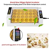GOTOTOP Incubator Hatcher-24 Digital Clear Egg Turning Incubator Hatcher Automatic Temperature Control Energy-saving Egg Incubator (#1) (Tamaño: #1)