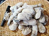 Amazon.co.jpかき 広島県産最大級2Lサイズ1kg 牡蠣 カキ かき