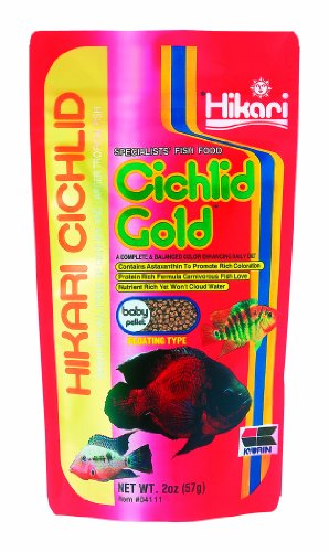 Hikari Cichlid Gold Floating Baby Pellets for Pets, 2-Ounce (Pawtastic Pet Supplies compare prices)