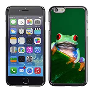Omega Covers - Snap on Hard Back Case Cover Shell FOR Iphone 6/6S (4.7 INCH) - Cool Happy Tree Frog