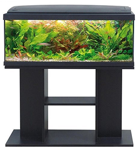 acquario-milo-100-nero-con-mobile-di-supporto