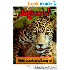 Jaguars! Learn About Jaguars and Enjoy Colorful Pictures - Look and Learn! (50+ Photos of Jaguars)