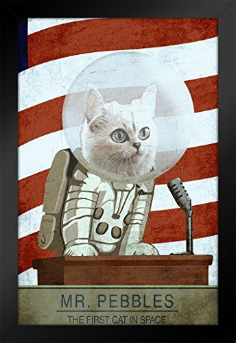 ProFrames-Mr-Pebbles-The-First-Cat-In-Space-Video-Gaming-Framed-Poster-12x18