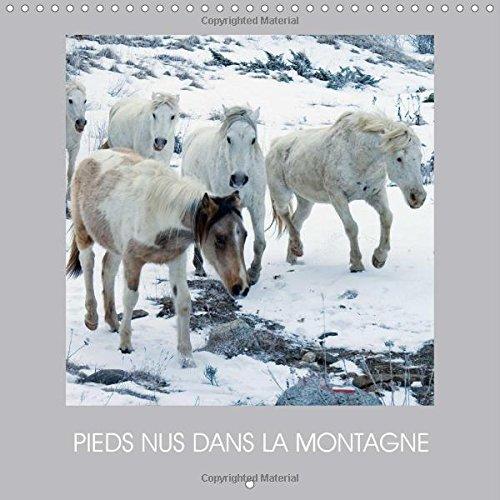 Pieds Nus Dans La Montagne: Des Chevaux En Liberte