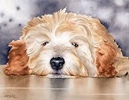 ''Goldendoodle'' Art Print Signed by Artist DJ Rogers