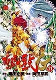 聖闘士星矢EPISODE.G 11 (チャンピオンREDコミックス)
