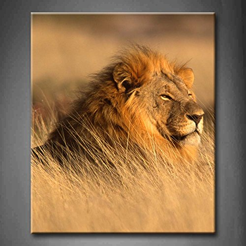 Big Male African Lion Lying In The Grass Wall Art Painting Pictures Print On Canvas Animal The Picture For Home Modern Decoration (Stretched By Wooden Frame,Ready To Hang)