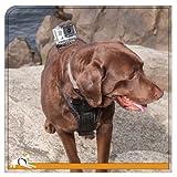 Kurgo Tru-Fit Smart Dog Harness with Camera Mount, Large, Black
