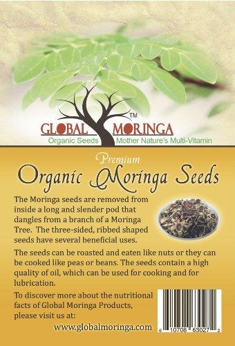 1500-moringa-oleifera-seeds-500-grams