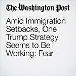 Amid Immigration Setbacks, One Trump Strategy Seems to Be Working: Fear | David Nakamura