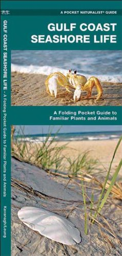 Gulf Coast Seashore Life: A  Folding Pocket Guide to Familiar Plants and Animals (Pocket Naturalist Guide Series) PDF