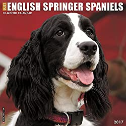 Just English Springer Spaniels 2017 Wall Calendar Dog Breed Calendars