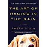 The Art of Racing in the Rain ~ Garth Stein