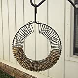 Wreath Coil Spring Peanut Feeder Black Attracts Jays, Woodpeckers and Other Peanut Loving Birds