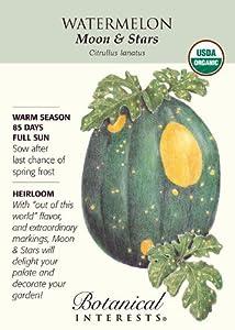 Watermelon Seeds Moon and Stars Certified Organic Heirloom Seeds