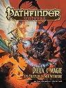 Pathfinder : Dieux & Magie par Reynolds