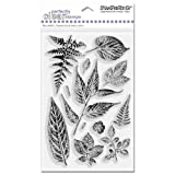Stampendous SSC023 Perfectly Clear Polymer Stamps, Summer Leaves