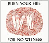 Burn Your Fire for No Witness