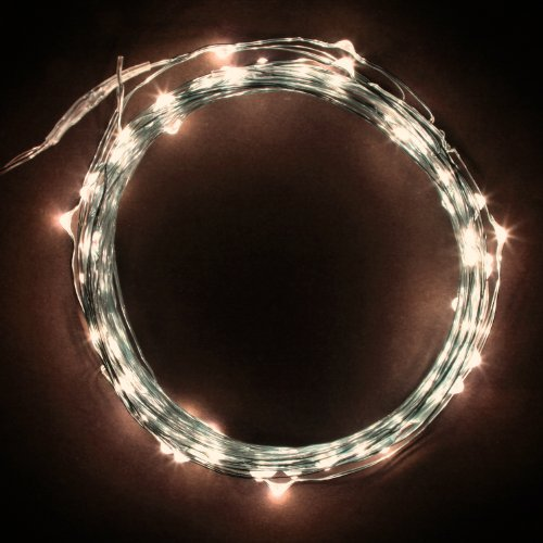 Rtgs Micro LED 100 Warm White Color Lights on 30 Ft Long Silver Ultra Thin String Wire