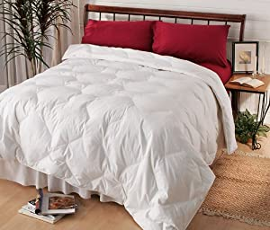 goose feather down comforter twin. Black Bedroom Furniture Sets. Home Design Ideas