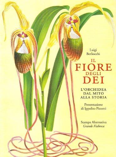 il-fiore-degli-dei-lorchidea-dal-mito-alla-storia