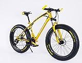 26インチ ファットバイク クルーザー自転車 FatBike 雪路 砂浜 (ゴールドxブラック)