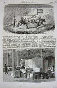1862 Australian Ox Tooran Goods Exhibition Building