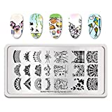 Summer Fruit Nail Art Stamping Template Tropical Punch Pattern Rectangle Image Plate Stamping Polish Needed BP-S-L011 (Color: BP-S-L011)