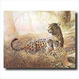 Tropical Cheetah Cat Family Animal Wildlife Wall Picture 16x20 Art Print