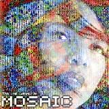 echange, troc Terri Lyne Carrington - The Mosaic Project