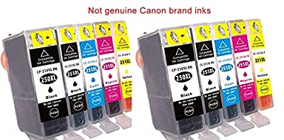 10 replacement Canon PIXMA MG7520 ink toner cartridge for 2 each of Cannon PGI-250XL Black, CLI-251XL Black, CLI-251XL, CLI-251XL, CLI-251XL for MG-7520 all-in-one multifunction inkjet Photo printer