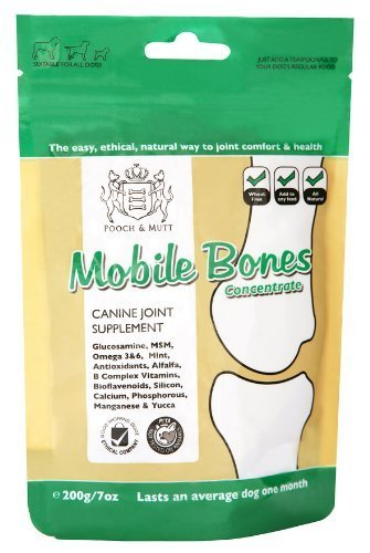 Supplements For Dogs With Hip Dysplasia