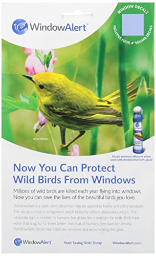 square-decal-help-prevent-wild-birds-from-accidentaly-striking-windows