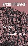 Image of Essays in Metaphysics