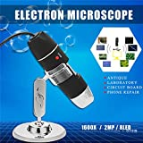 1600x 8LED Zoom USB Digital Microscope Electronic Lens Light Biology Biological Magnifier Endoscope Camera Video Stand Handheld