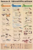 (24x36) Insect Identification Educational Science Chart Poster