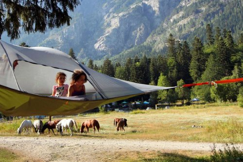 Tentsile Stingray tree tent テントサイル スティングレイ 3人用 宙に浮く新感覚テント (フォレストグリーン)