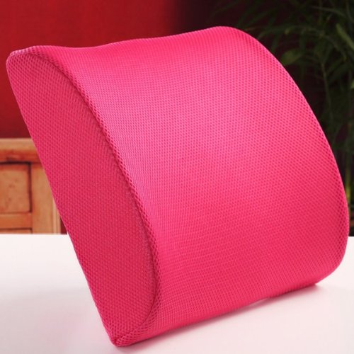 Thg New Memory Foam Seat Chair Rose Lumbar Back Pain Support Cushion
