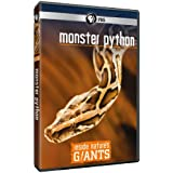 Inside Nature's Giants: Monster Python