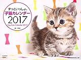 ずっといっしょ。子猫カレンダー2017 ランキングお取り寄せ
