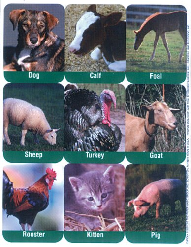 Eureka Farm Animals Real Photos Stickers