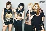 2NE1 Korean Girl Group Music Poster 7380
