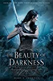 The Beauty of Darkness: The Remnant Chronicles