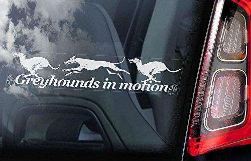 greyhound-car-window-sticker-dog-sign-internal-reverse-printed-v03