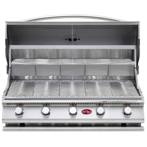 Cal Flame Bbq09G05 5-Burner G5 Stainless Steel Gas Barbecue Grill