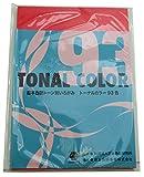 日本色研 トーナルカラー B5判 93色組