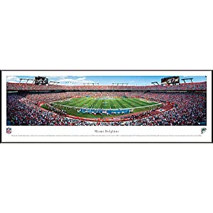 NFL Miami Dolphins Framed Panoramic Stadium Photo by Blakeway Worldwide Panoramas