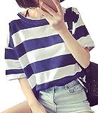 【PALERO・パレロ】選べる6色ストライプ ボーダー 半袖 Tシャツ 3サイズ (L, ブルー)